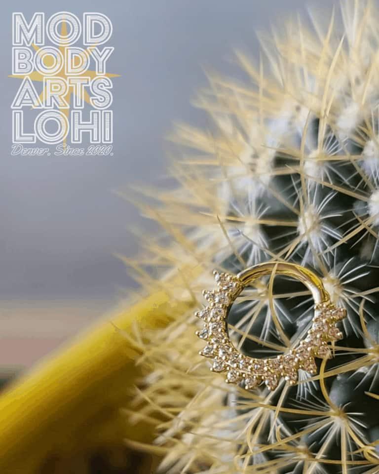 septum ring Mod Body Arts Denver